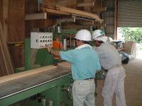 工場内作業